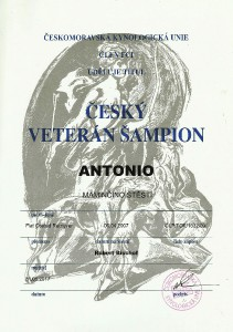 veteran-sampion-cr-tony.jpg